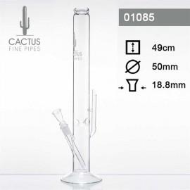 Bong Cactus